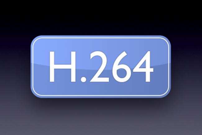 H 264